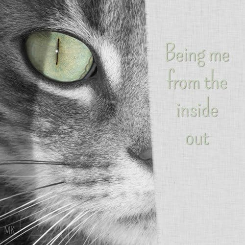 Being me from the inside out. A message brought to you with love, light and blessings from Marci Kobayashi at lightmessagesoflove.com