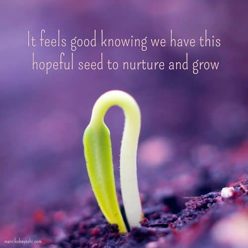 It feels good knowing we have this hopeful seed to nurture and grow. A message brought to you with love, light and blessings from Marci Kobayashi at marcikobayashi.com