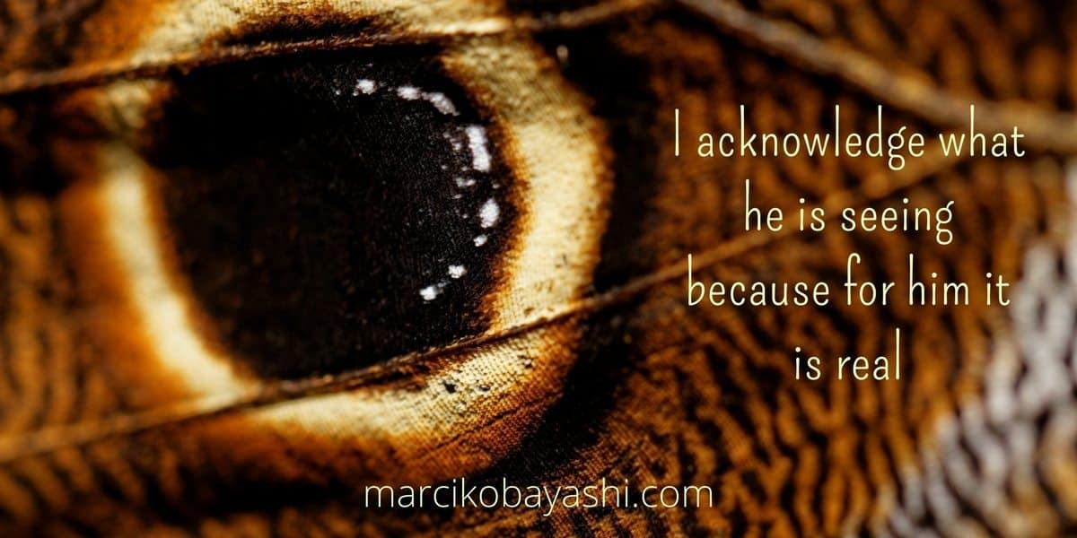 I acknowledge the hallucination and what he is seeing because for him it is real. | Living with Alzheimer's with Marci at marcikobayashi.com