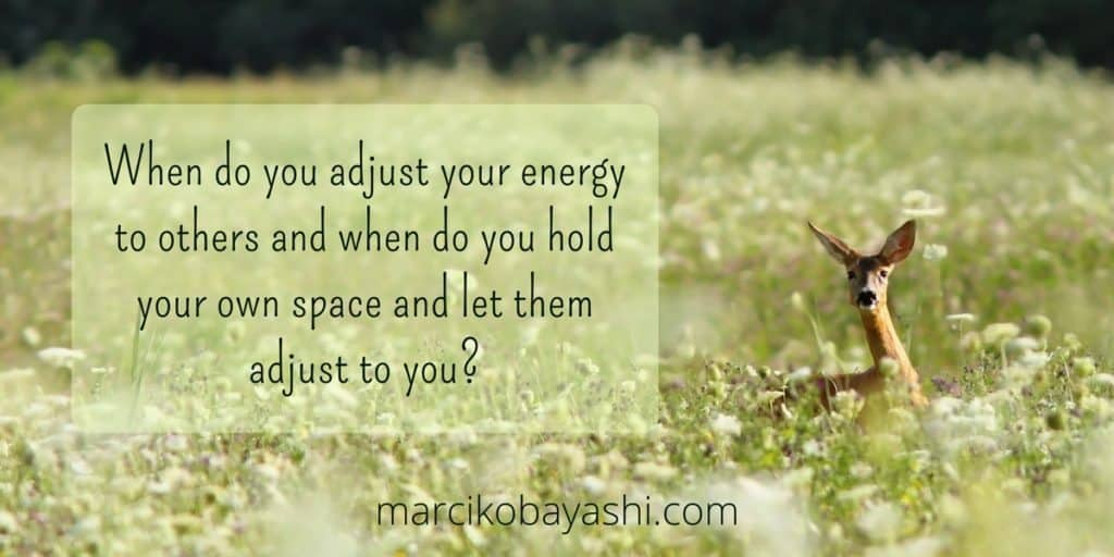 When do you adjust your energy to others and when do you hold your own space and let them adjust to you? | Exploring life with Marci at marcikobayashi.com