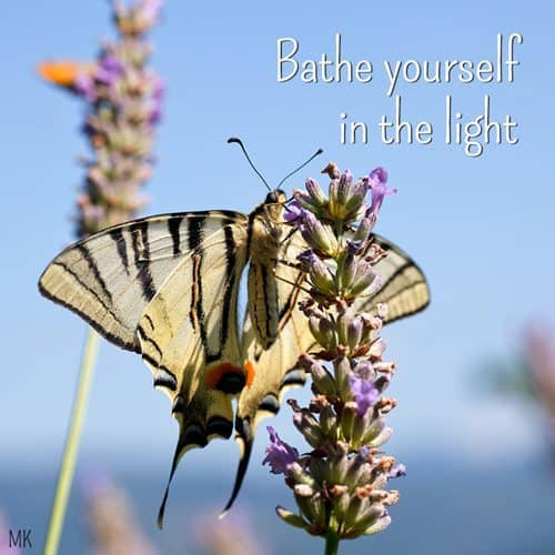 Bathe yourself in the light. | A message brought to you with love, light and blessings from Marci Kobayashi at marcikobayashi.com