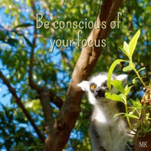Be conscious of your focus. | An intuitive message brought to you with love, light and blessings from Marci Kobayashi at marcikobayashi.com