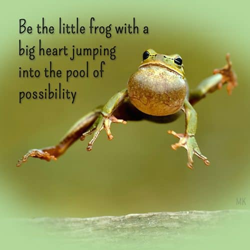 Be the little frog with a big heart jumping into the pool of possibility. | A message brought to you with love, light and blessings from Marci Kobayashi at marcikobayashi.com