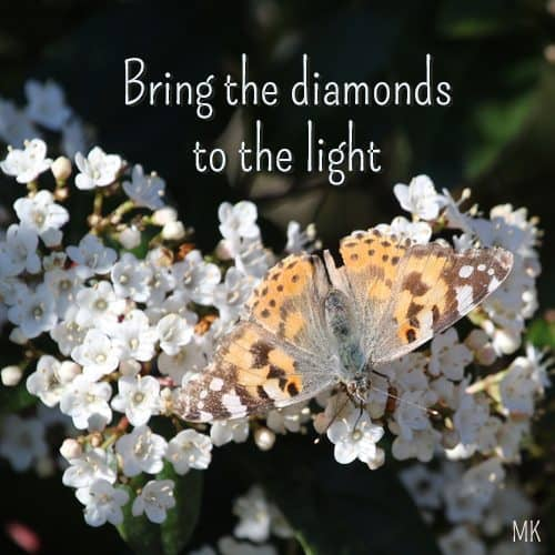 Bring the diamonds to the light. | An intuitive message brought to you with love, light and blessings from Marci Kobayashi at marcikobayashi.com