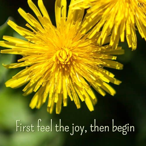 First feel the joy, then begin. | An intuitive message brought to you with love, light and blessings from marcikobayashi.com