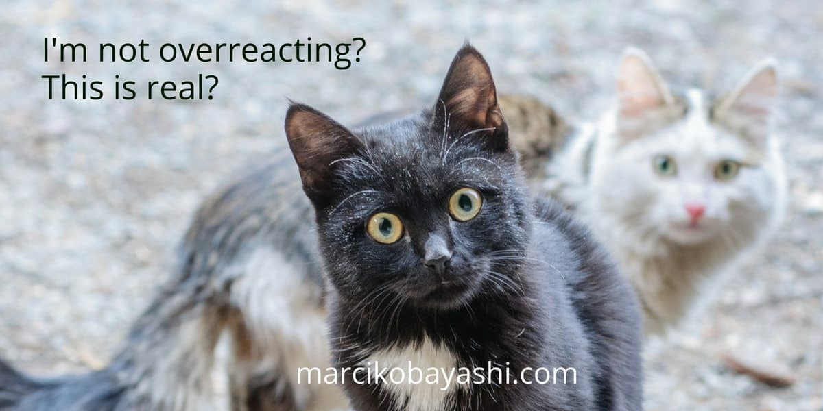 I'm not overreacting? This is real? | Living with Alzheimer's with Marci at marcikobayashi.com