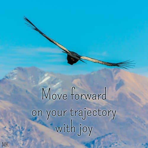Move forward on your trajectory with joy. | A message brought to you with love, light and blessings from Marci Kobayashi at marcikobayashi.com