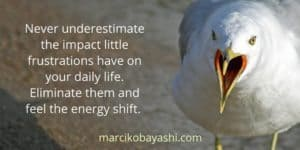 Never underestimate the impact little frustrations have on your daily life. | Marci's musings at marcikobayashi.com