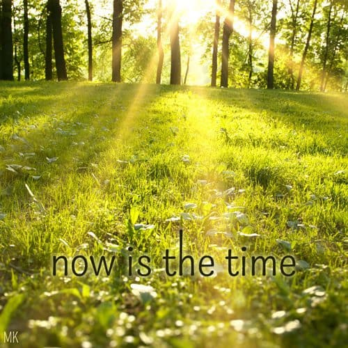 Now is the time.   A messge brought to you with love, light and blessings from Marci Kobayashi at marcikobayashi.com