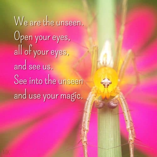 We are the unseen. Open your eyes, all of your eyes, and see us. See into the unseen and use your magic.   A message brought to you with love, light and blessings from Marci Kobayashi at marcikobayashi.com