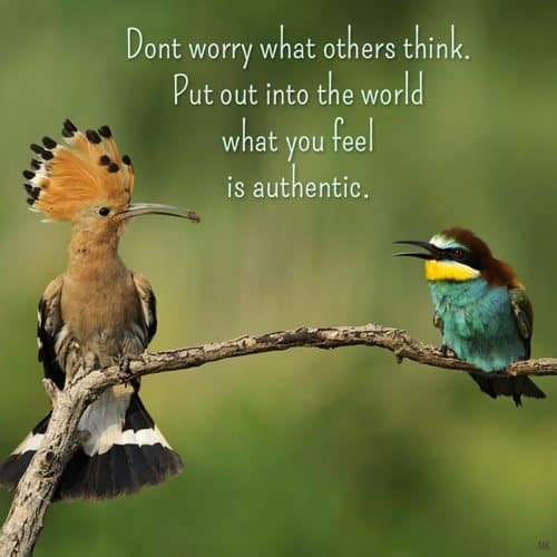 Don't worry what others think. Put out into the world what you feel is authentic. | A message brought to you with love, light and blessings from Marci Kobayashi at marcikobayashi.com