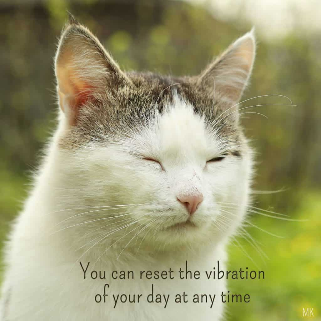 Reset the vibration of your day at any time. | An intuitive message brought to you with love, light and blessings from Marci Kobayashi at marcikobayashi.com