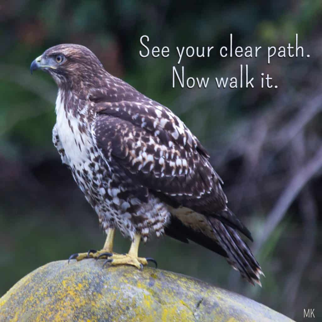 See your clear path. Now walk it.   An intuitive message brought to you with love, light and blessings from Marci Kobayashi at marcikobayashi.com