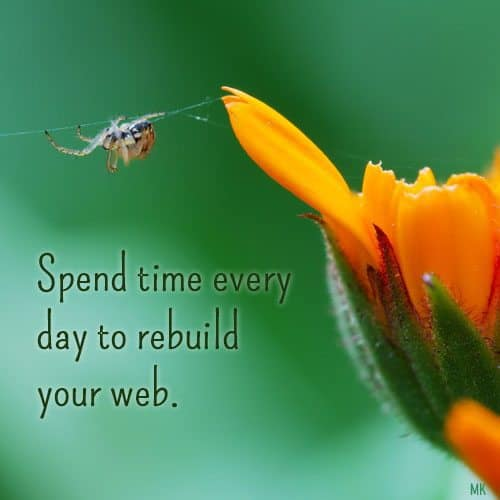 Spend time every day to rebuild your web. A message brought to you with love, light and blessings from Marci Kobayashi at marcikobayashi.com