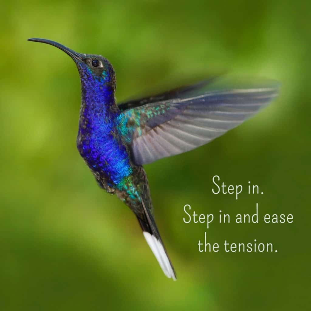 Step in. Step in and ease the tension.. | An intuitive message brought to you with love, light and blessings from Marci Kobayashi at marcikobayashi.com