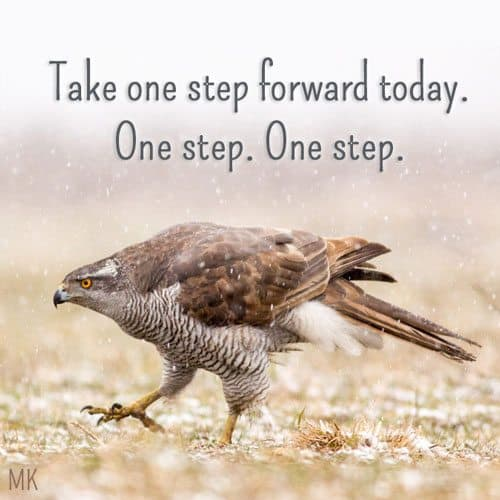Take one step forward today. One step. One step.   A message brought to you with love, light and blessings from Marci Kobayashi at marcikobayashi.com