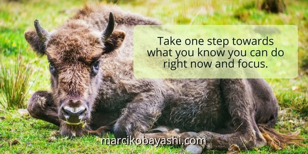 Take one step towards what you know you can do right now and focus | Supporting a chemo-free recovery from cancer with Marci at marcikobayashi.com