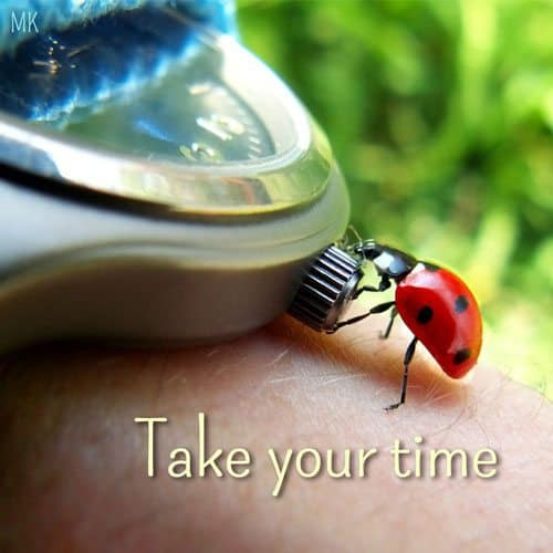 Take your time.   A message brought to you with love, light and blessings from Marci Kobayashi at marcikobayashi.com