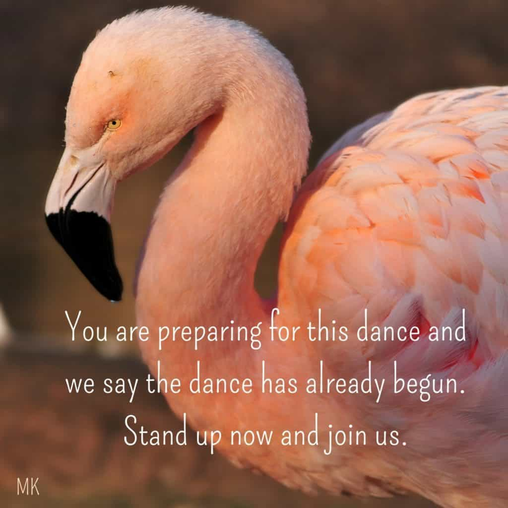 You are preparing for this dance and we say the dance has already begun. Stand up now and join us.   A message brought to you with love, light and blessings from Marci Kobayashi at marcikobayashi.com