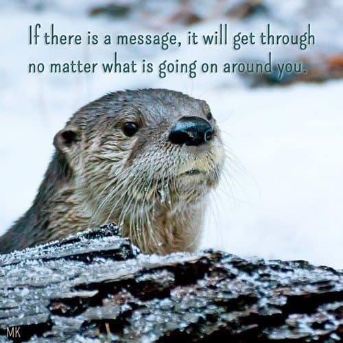 If there is a message, it will get through no matter what is going on around you. | A message brought to you with love, light and blessings from Marci Kobayashi at marcikobayashi.com
