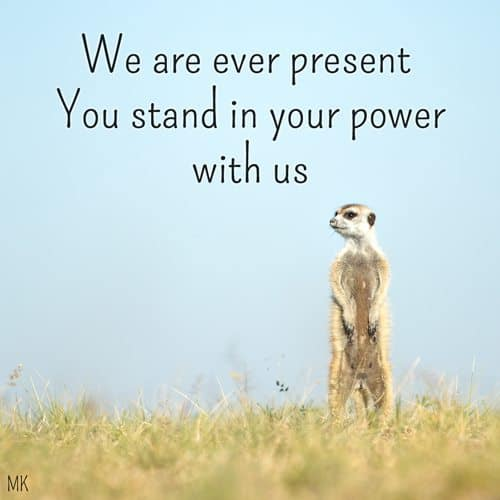 We are ever present. Stand in your power with us. | A message brought to you with love, light and blessings from Marci Kobayashi at marcikobayashi.com