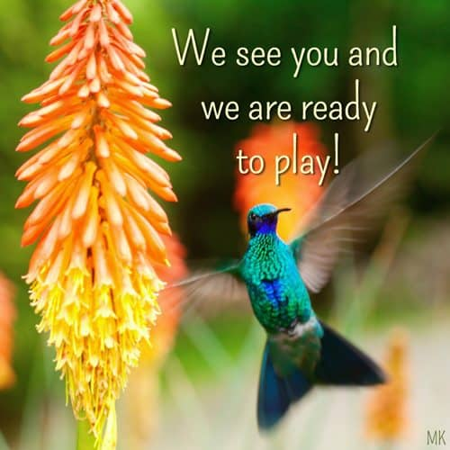 We see you and we are ready to play. | A message brought to you with love, light and blessings from Marci Kobayashi at marcikobayashi.com